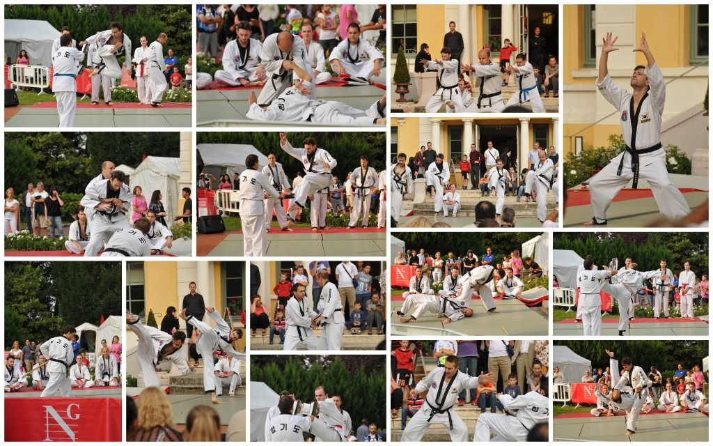 Démonstration de Hapkido au forum des associations 2014